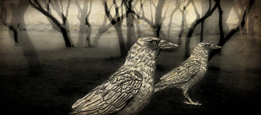 Crows in the Woods